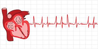 Fibrilația atrială: simptome cardiace, diagnostic și tratament AFib
